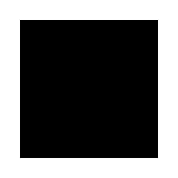 Plastitoile noir