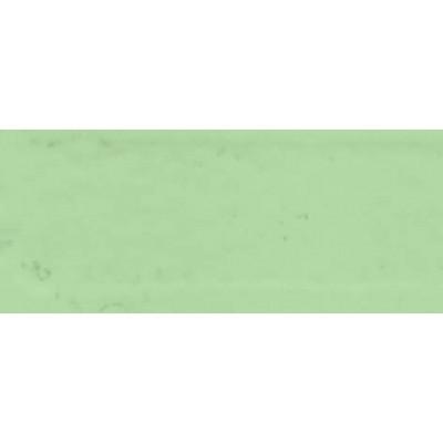 LAQUEFOLIE VERT 6024